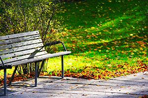 Gårdhave (300x200 px)